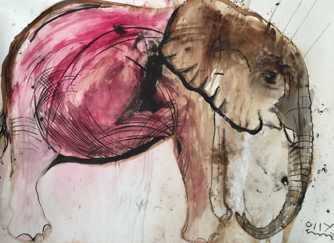 Pink Tembo