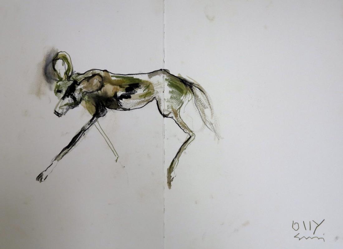 Green wilddog