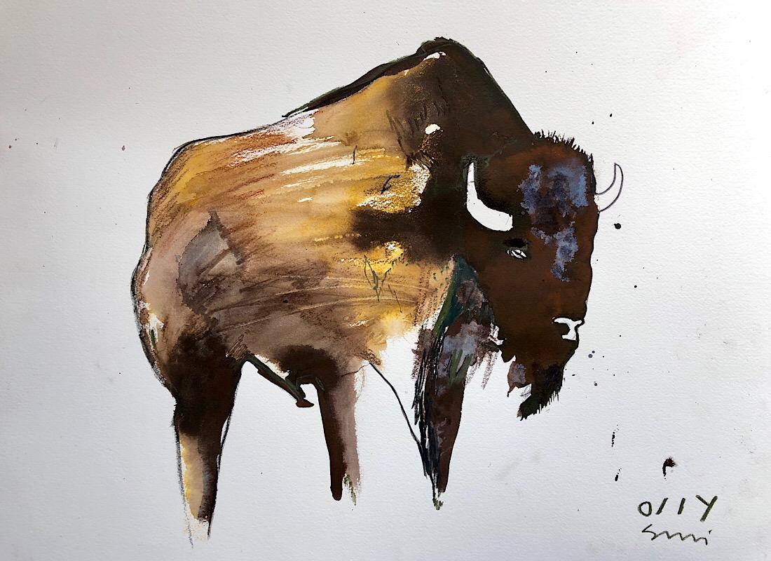 Buffalo yellow