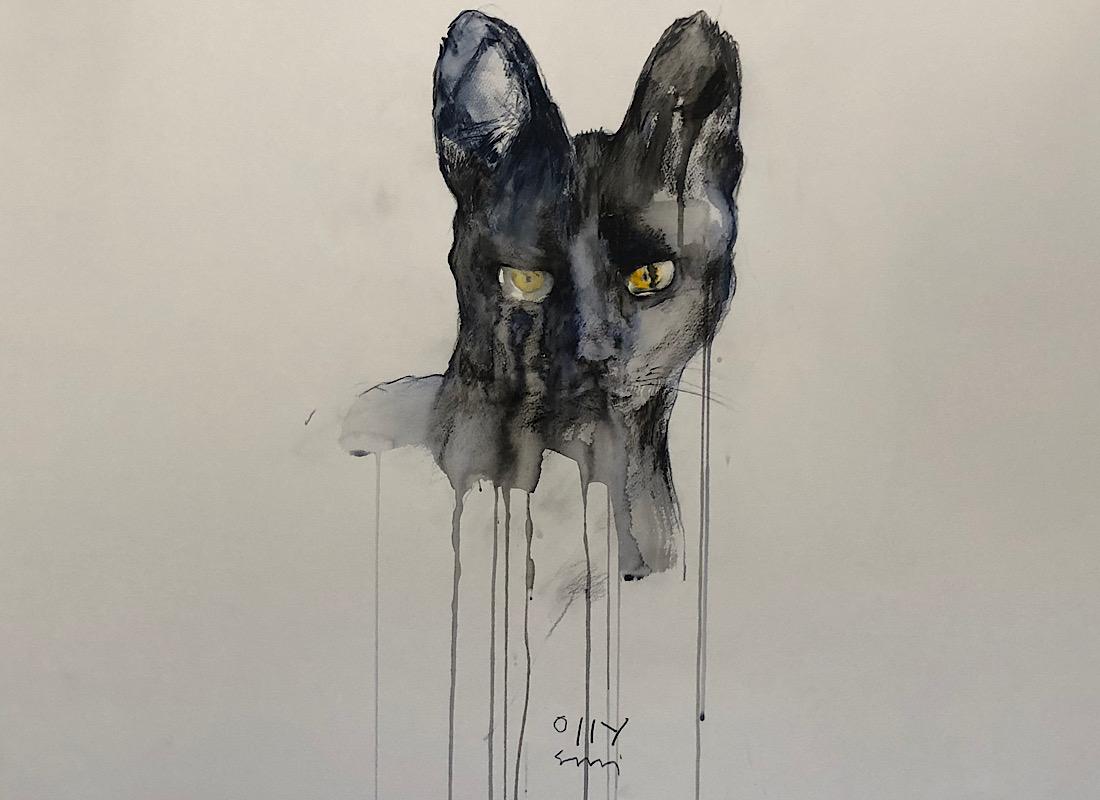 Black Serval Cat